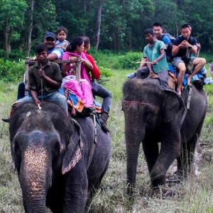 Nature & Safari With Heritage Tour